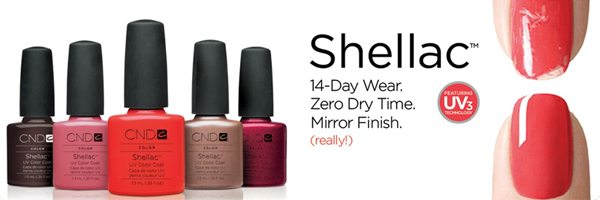 smalto shellac