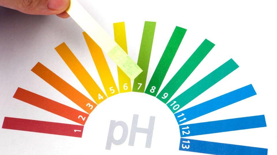pH neutro